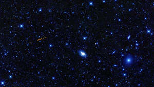 The asteroid Santa glows red in the image from NASA's WISE observatory.