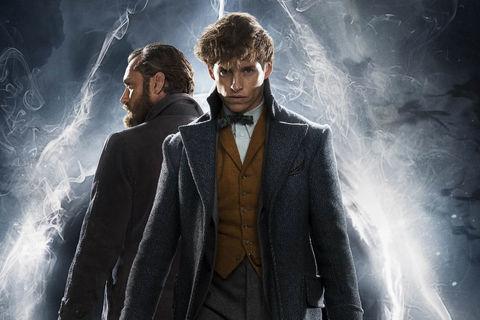 Fantastic Beasts The Crimes of Grindelwald Hero
