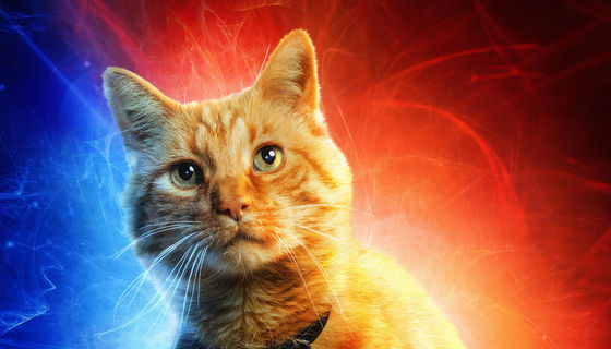 Captain Marvel Goose the cat character poster