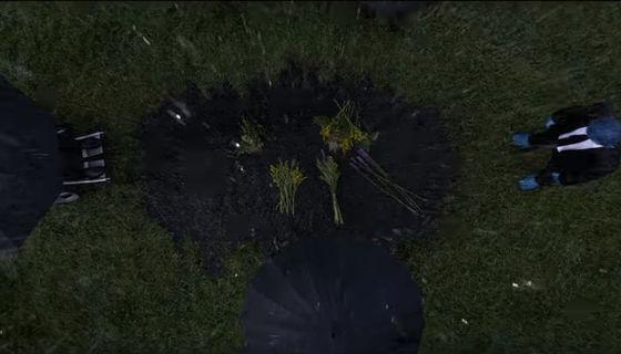 Dark Phoenix funeral