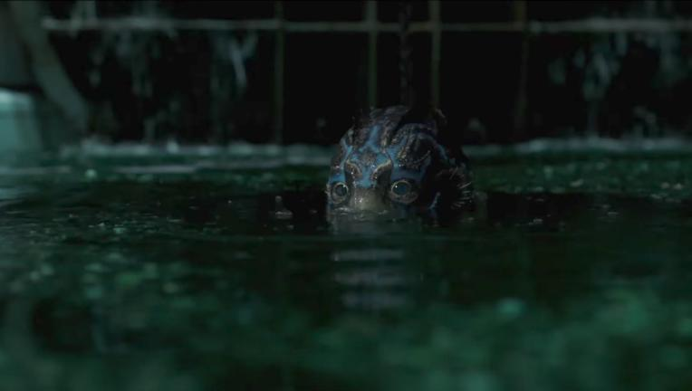 TheShapeOfWater.png