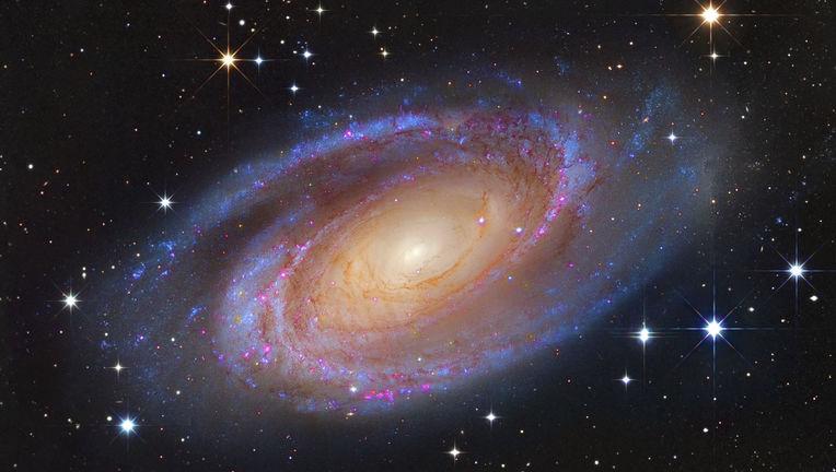 spiral galaxy M81