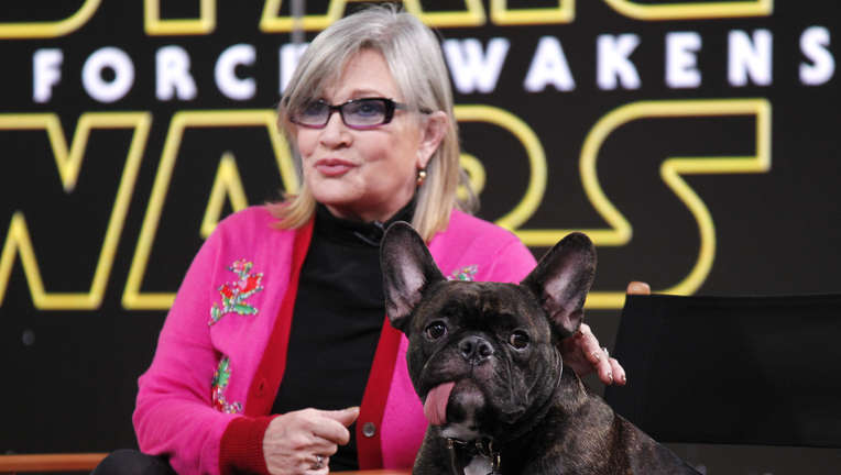 carriefisher.jpg