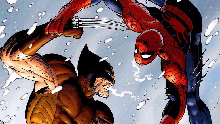 spidermanvswolverine.jpg