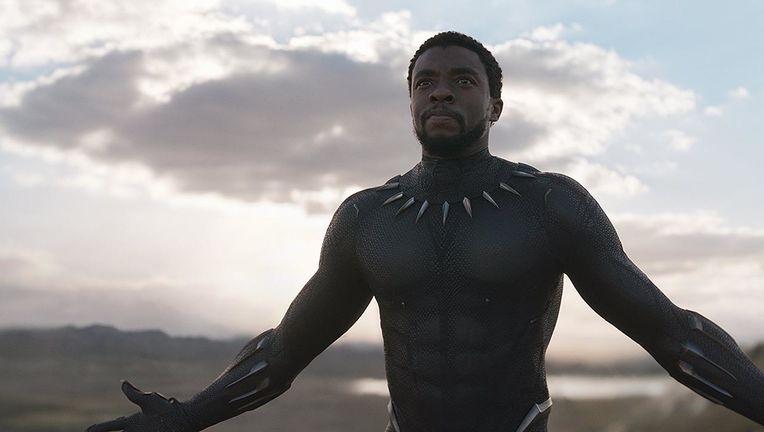 black_panther_hero_01.jpg