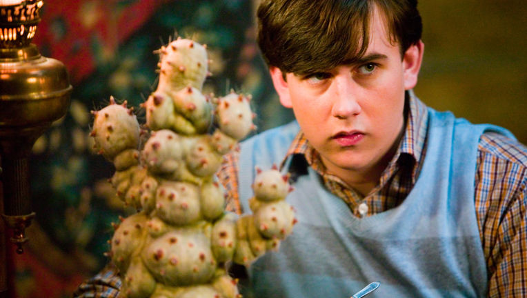 Neville Longbottom, Harry Potter