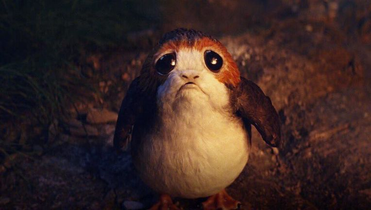 Star Wars: The Last Jedi sad porg