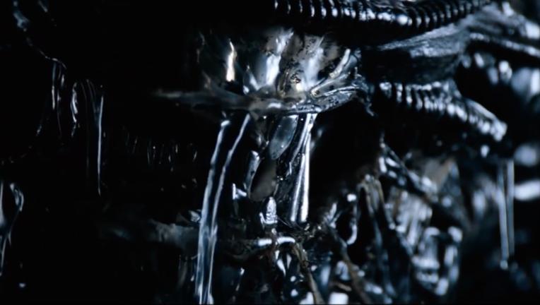 Xenomorph from Alien