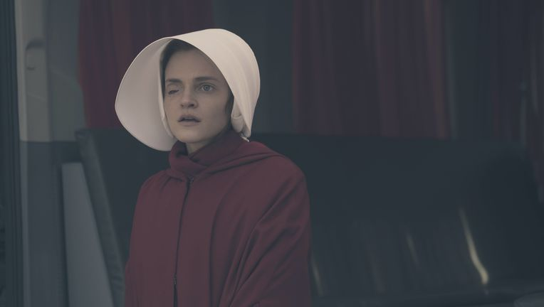The Handmaids Tale Brewer.jpg