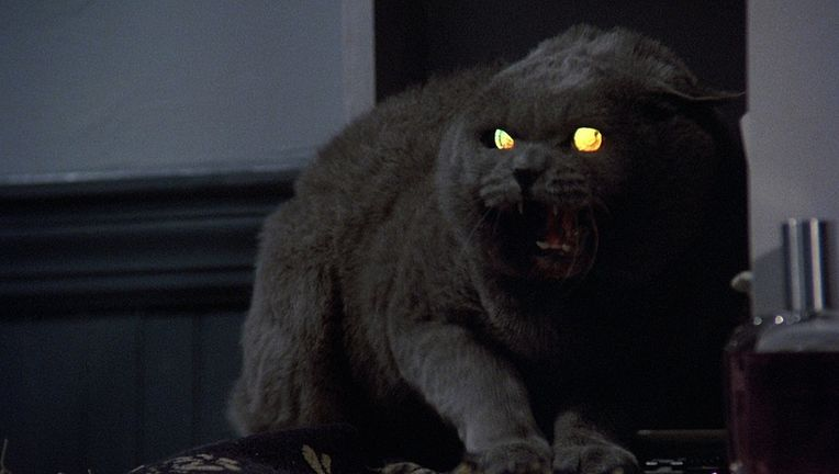 Pet Sematary's Church The Cat