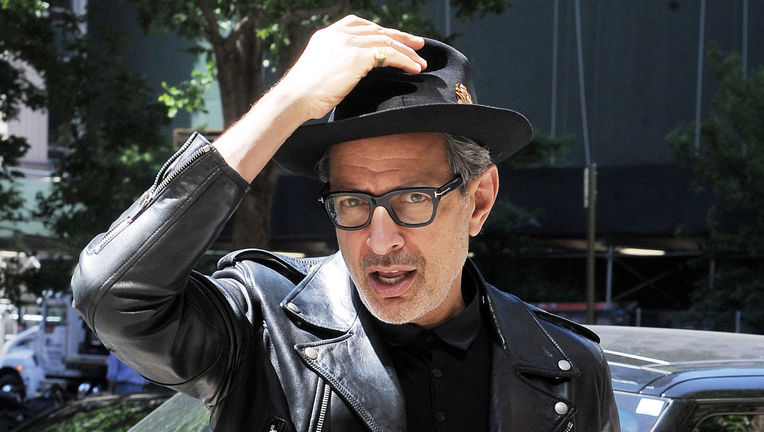 goldblum-hat-hero