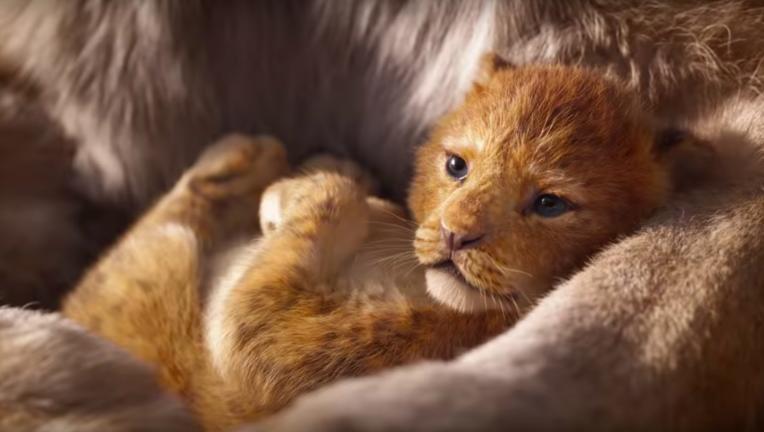 Samba The Lion King Jon Favreau