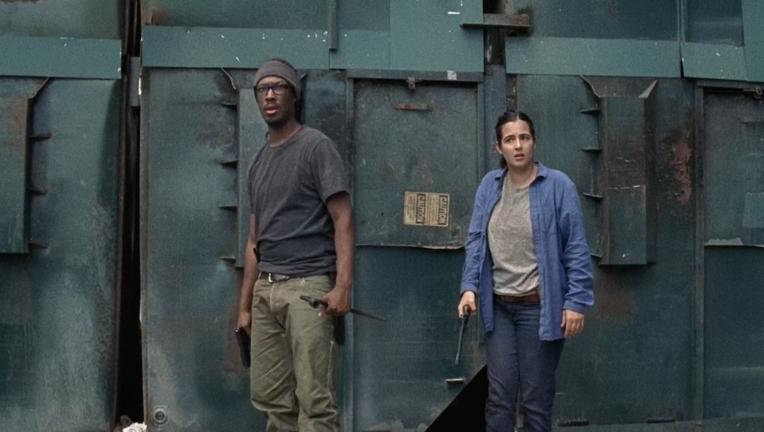 The Walking Dead Heath and Tara
