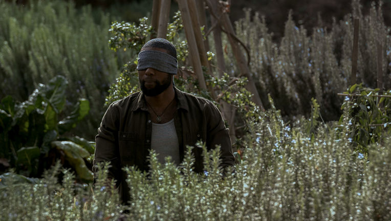 Bird Box, Trevante Rhodes