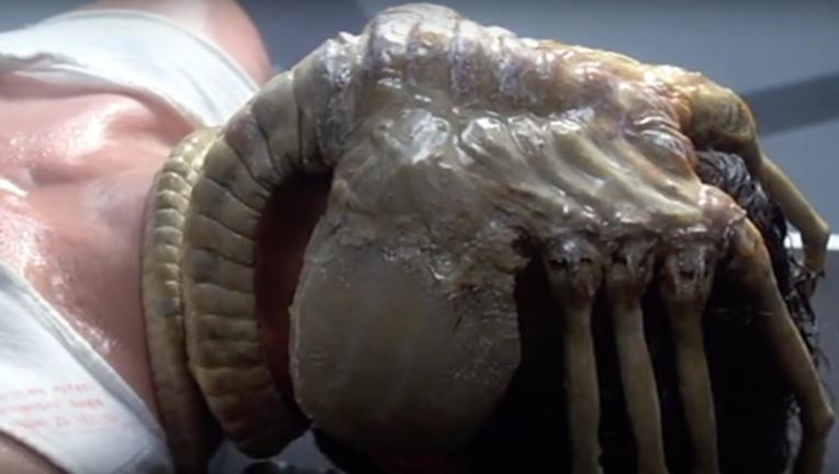 FaceHugger from Alien