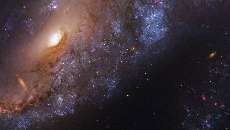 The inner regions of the Meathook Galaxy, NGC 2442, using observations from Hubble and a 2.2 meter telescope in Chile.