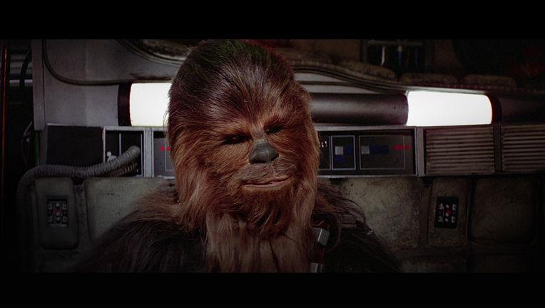 hero_Chewbacca.jpg