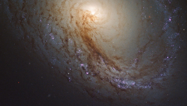 The nearby spiral galaxy M96, observed by Hubble Space Telescope. Credit: NASA, ESA, and the LEGUS team