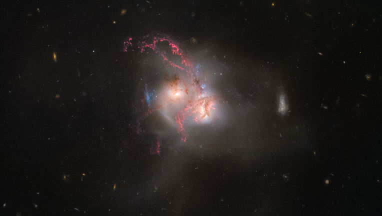 NGC 5256, a pair of colliding galaxies 350 million light years away. Credit: ESA/Hubble, NASA