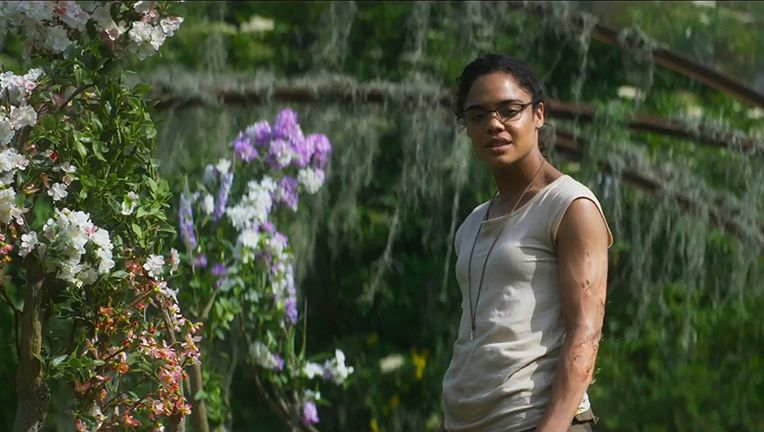 Annihilation, Tessa Thompson