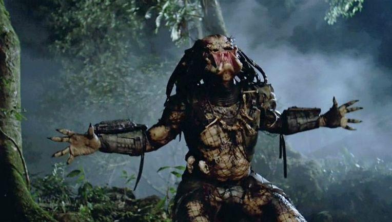 the_predator_51
