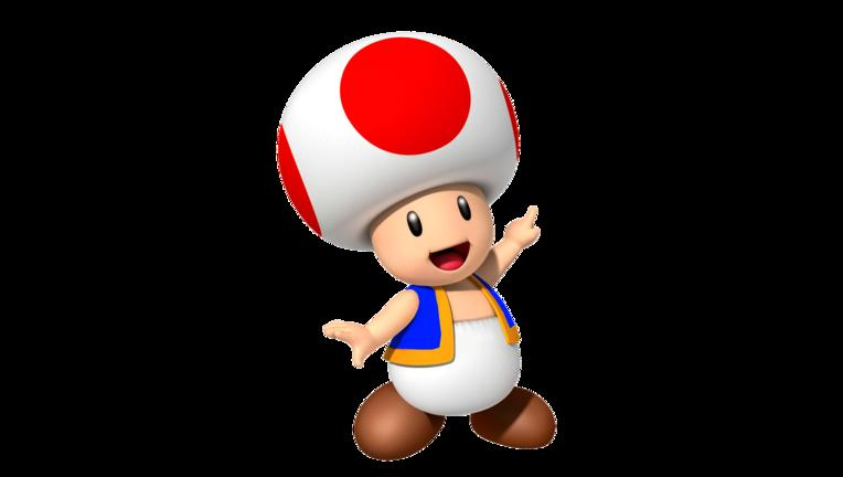 toad-cootd
