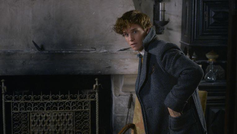 Fantastic Beasts: The Crimes of Grindelwald Newt Scamander Eddie Redmayne