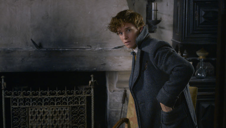 Fantastic Beasts: The Crimes of Grindelwald Newt Scamander Eddie Redmayne