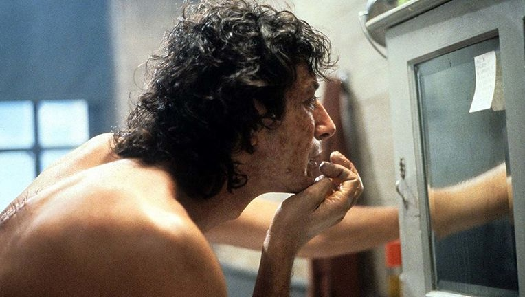 The Fly Jeff Goldblum mirror hero