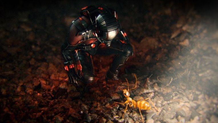 Ant-Man-Empire-3_1.jpg