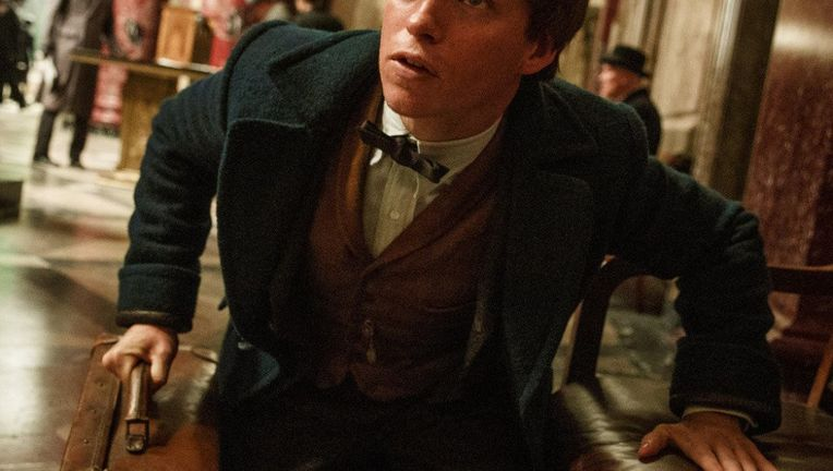 Fantastic-Beasts-and-Where-to-Find-Them-Eddie-Redmayne.jpg