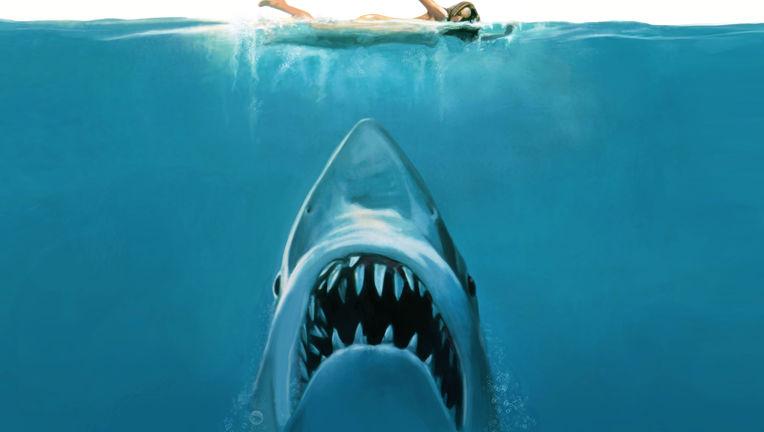 Jaws1.jpeg