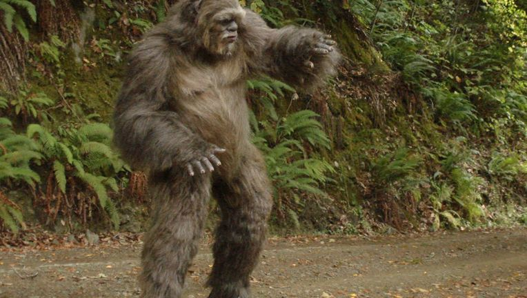 an overview of the bigfoot in the american mythology Find out on myths & legends previously aired episode aired on 11/19/2008 bigfoot, phone home season 2 : episode 7 american crime story.