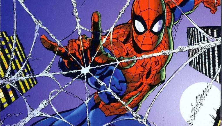 SpiderManWebs.jpg