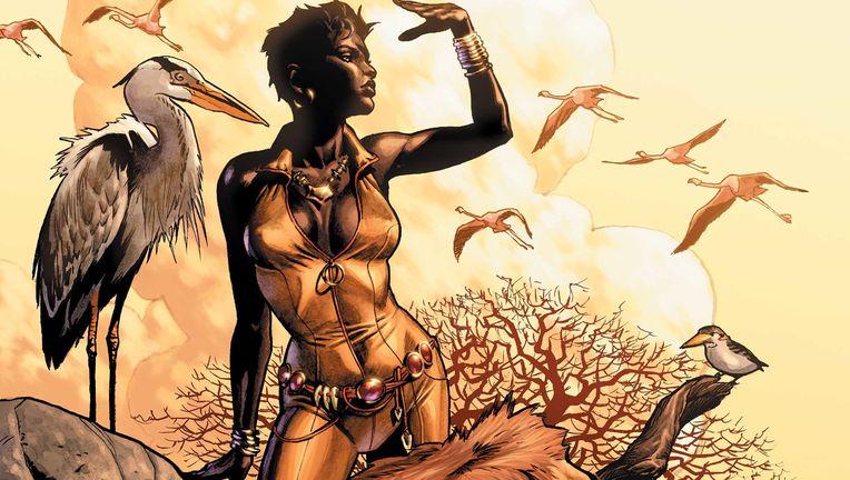 Vixen-DC-Comics.jpg