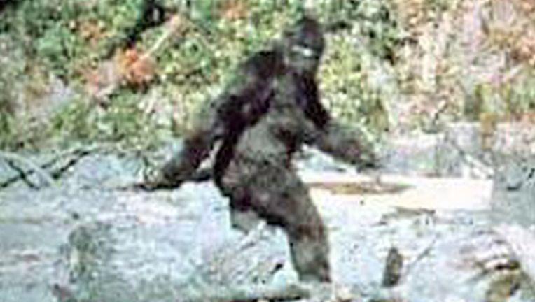 bigfoot1.jpg
