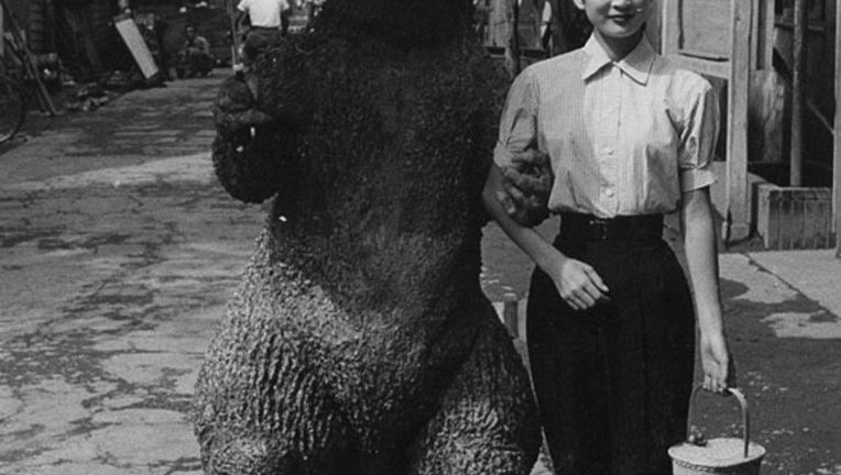 Godzilla012412.jpg