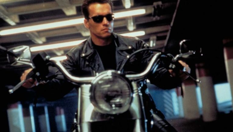TerminatorArnold2.jpg