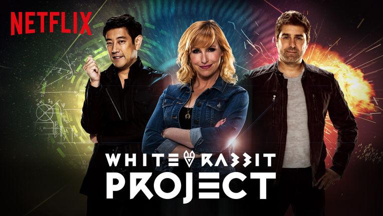 white-rabbit-project.jpg