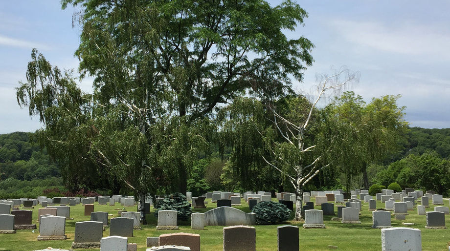 Mount Hope Cemetery, Stephen King