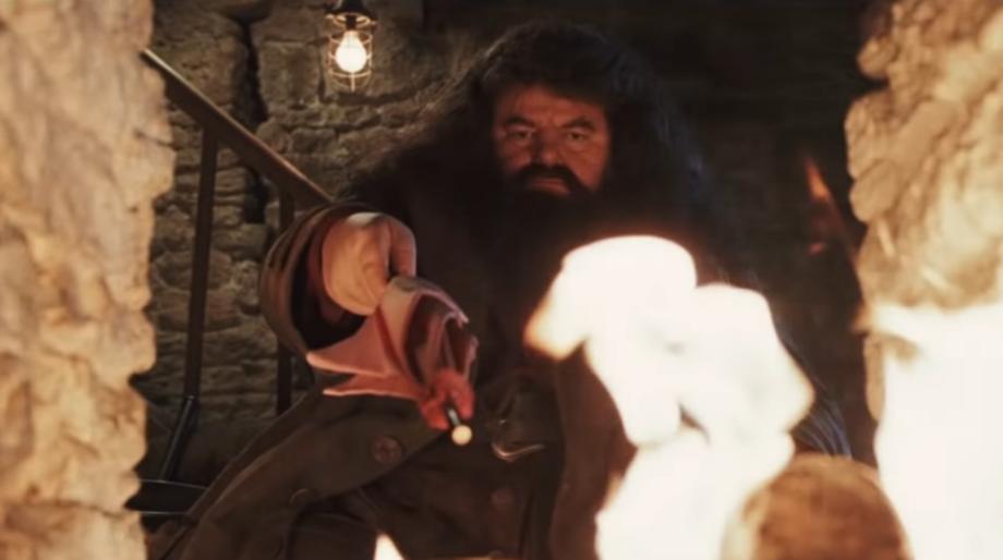 Hagrid Wand Harry Potter
