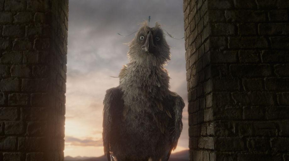 Augurey, Fantastic Beasts: The Crimes of Grindelwald