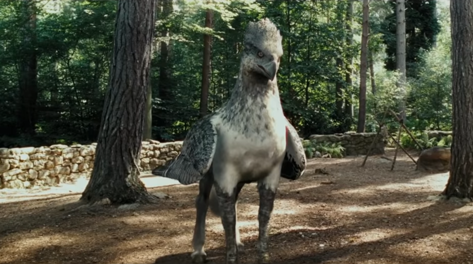 Buckbeak Harry Potter
