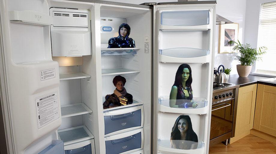 fangrrls-fridge