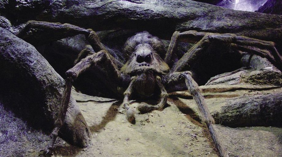 Harry Potter Aragog