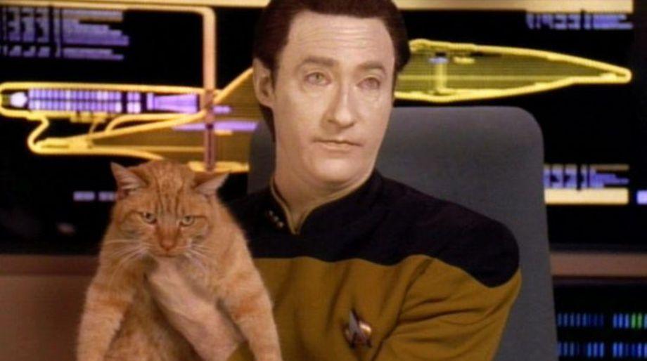 Spot (Star Trek- The Next Generation)