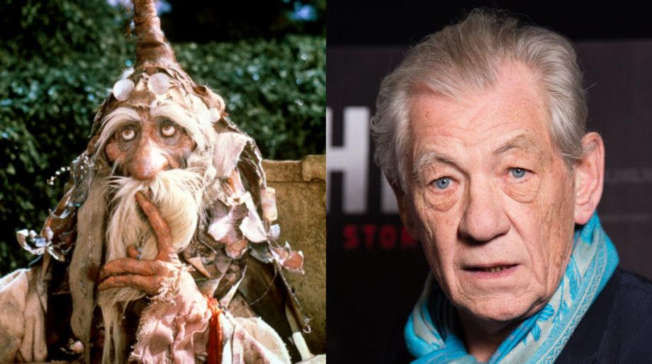 Ian McKellen as the Wiseman