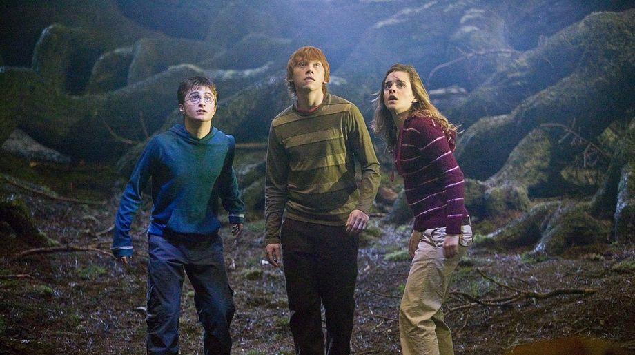 Harry_Potter_Order_Phoenix_10