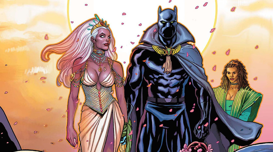 storm_and_black_panther.jpg