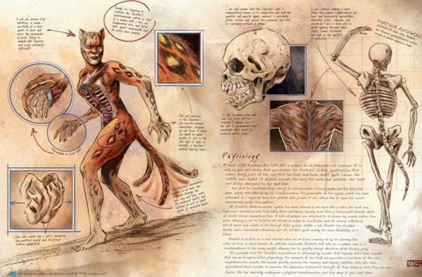 DC Comics Anatomy of a Metahuman, Cheetah